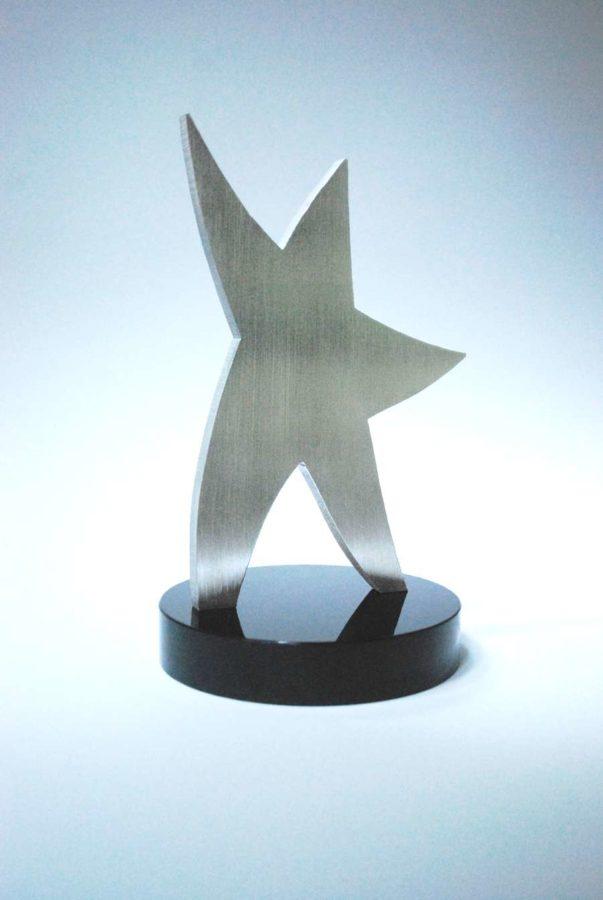 AWARD:  HUMAN STAR AWARD KRISTAL